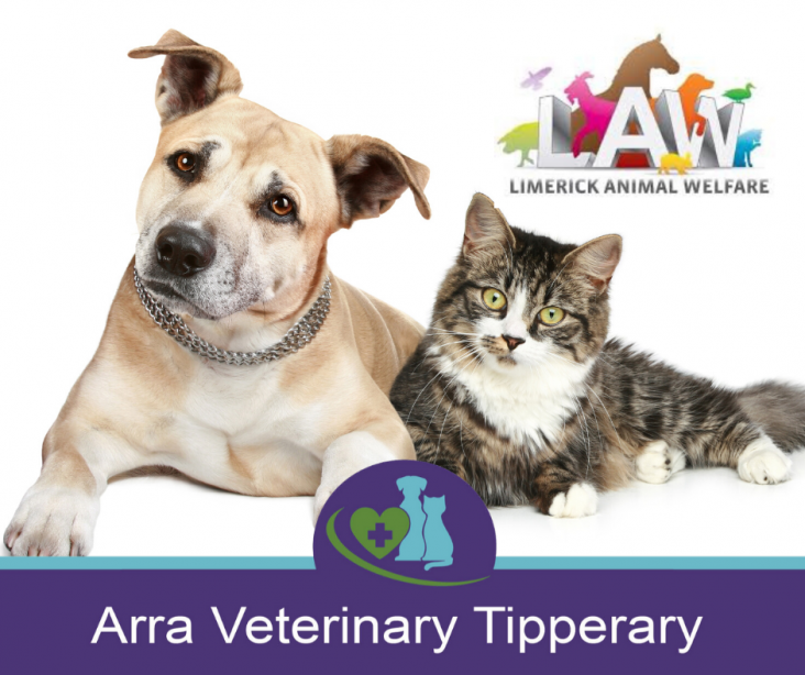 Donate to Limerick Animal Welfare